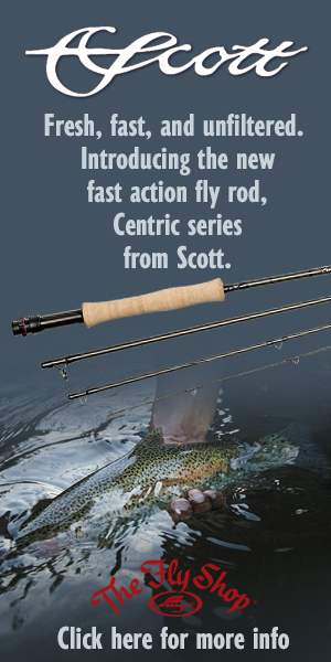 Scott Centric at The Fly Shop