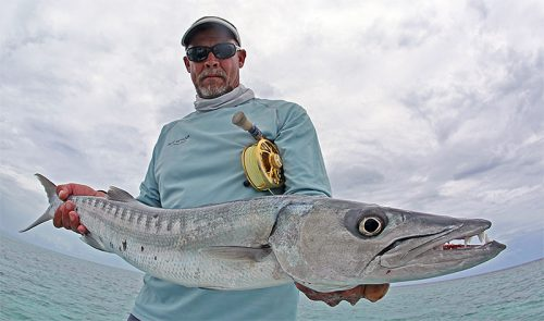 Belize Barracuda