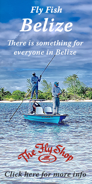 Fly Fish Belize with The Fly Shop