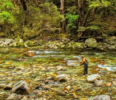Owen River Lodge - New Zealand
