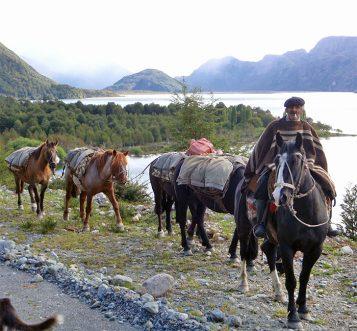 Chilean Gaucho