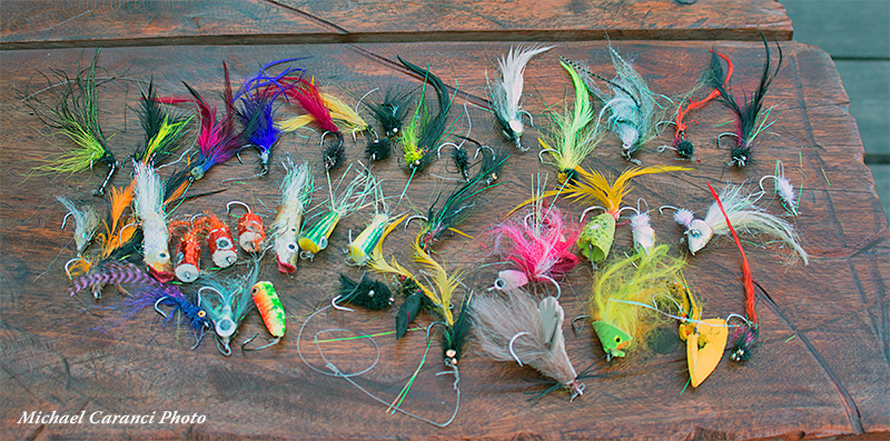 Essential Gear for Fly Fishing for Dorado in Bolivia