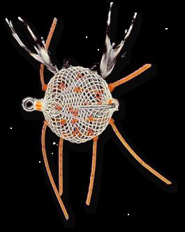 Flexo Crab