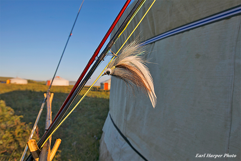 Essential Fly Rods for Fly Fishing for Taimen in Mongolia