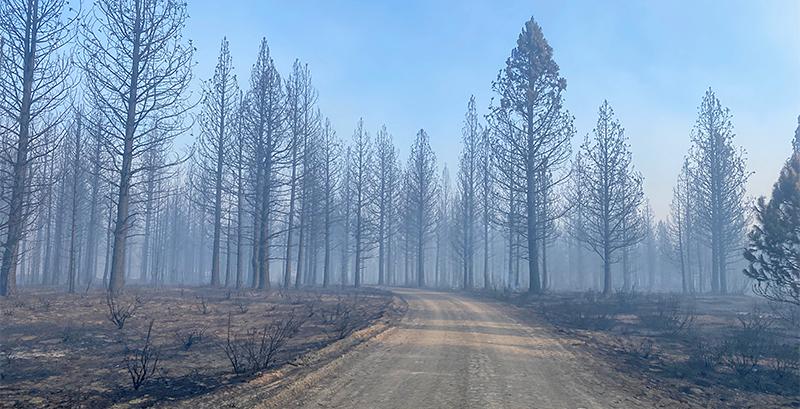 Antelope Fire at Antelope Creek Ranch